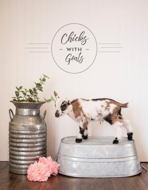 Chicks With Goats Rebel Poe - 2018 Kidding (Buck 2)