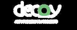 Decoy Magazine : Art, Publishing, Projects