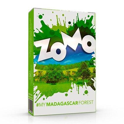 Zomo Madagascar Forest
