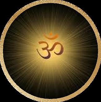 11 Swamini Akhilananda
