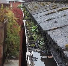 How to clean your guttering out to prevent blockages.