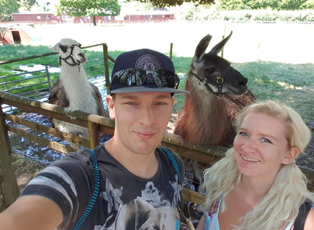Share your Days Out _ Alpaca Experience day