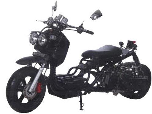 MADDOG - 50cc