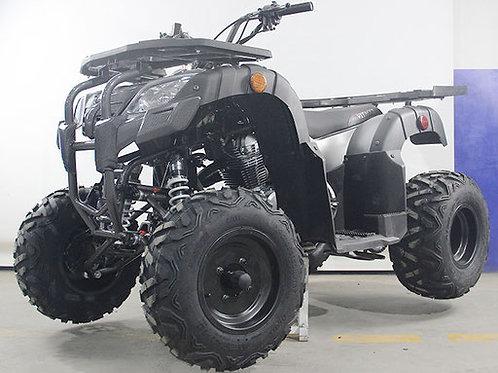 PENTORA UT 250cc - MANUAL CLUTCH