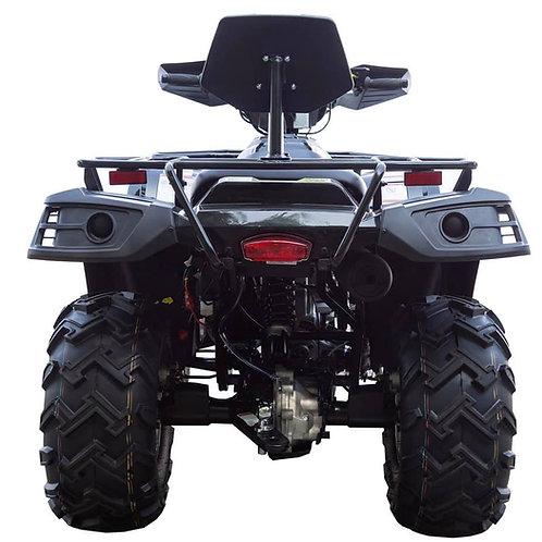 Terminator 300 -Deluxe