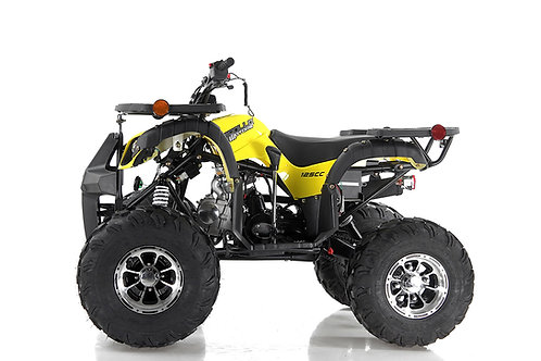 FOCUS 10 DLX 125cc