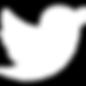 iconmonstr-twitter-1-240 (2).png