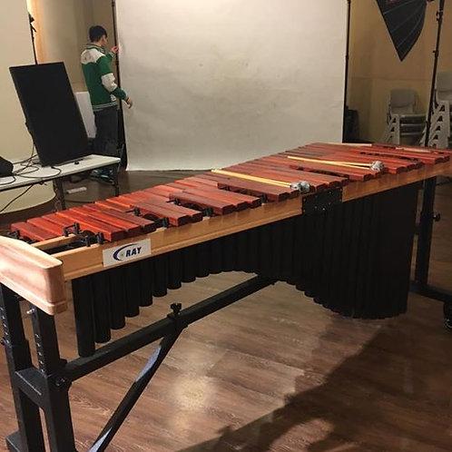 CORAY Marimba 4.3oct 馬林巴琴