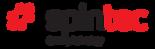 Spintec_logo_curves.png