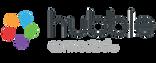 Hubble logo .png