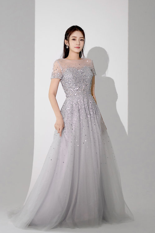 Royal Silver Short Sleeves Gown