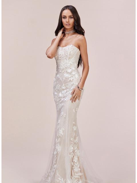 AL Bustier Lace Mermaid Gown