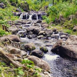 Refreshing auau wai