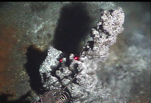 Middle Valley Hydrothermal vents