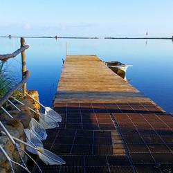 Oooo kanani!! Perfect start to the week! #paepaeoheeia #fishpond #weeklysamples #fieldwork
