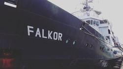 V #Falkor. Lots of set up action
