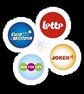 Logo_nat lot.png