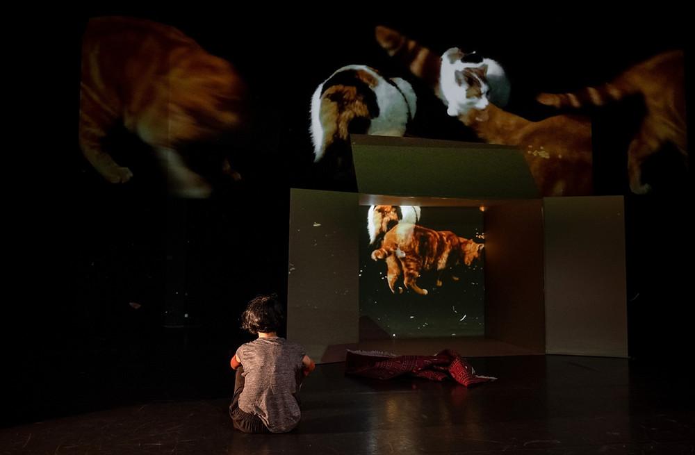 Tanzproduktion von Irina Lorez & Co