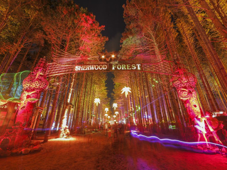 FESTIVAL REVIEW: 'Eclectic Forest' Reigns Supreme