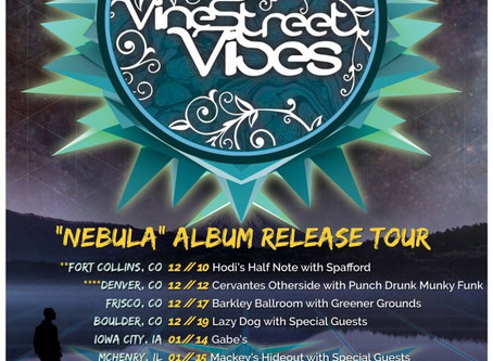 INTERVIEW: Vine Street Vibes' Discuss Nebula LP, Running Out of Gas, + a BIG 2016!