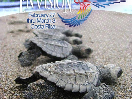 Envision Festival 2013 [Official Trailer]