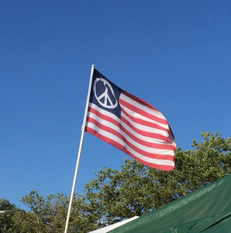 vibes-peace-flag