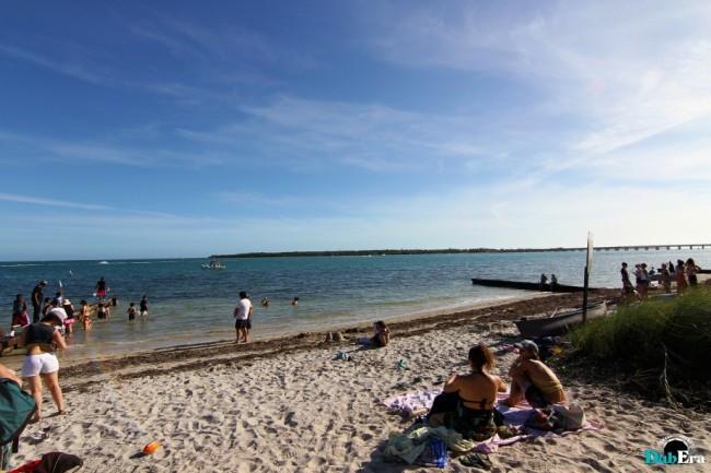 grassroots festival beach