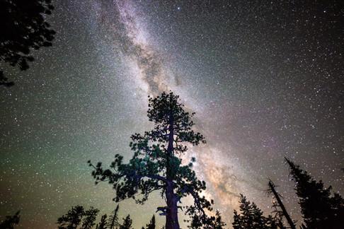 Yosemite-3194.jpg