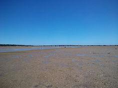 干潮時の船浦湾