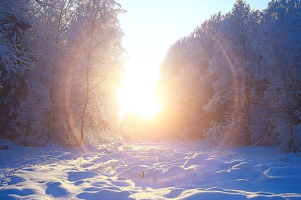 Winter Blues.jpeg