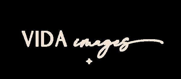 Vida%20Images_Main%20logo2_edited.png