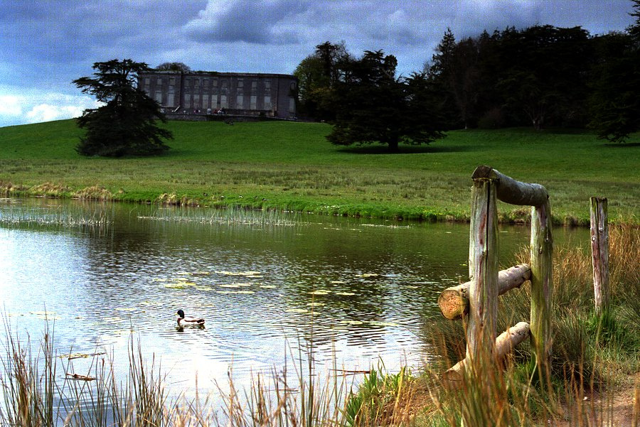 CurraghchaseHouse