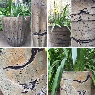 Concrete Flowerpots