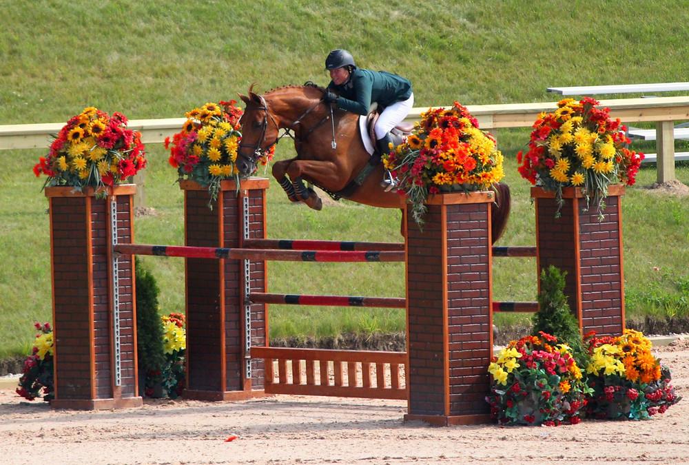 Ohio Horse Appraisal