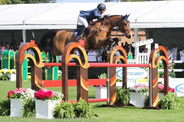 Grand Prix Jumper Horse Appraisal