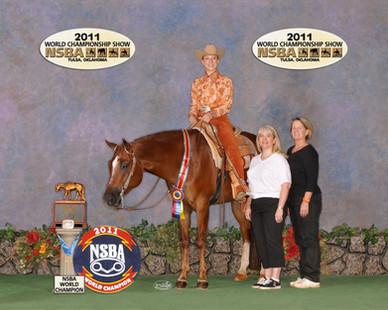 Flash Me Too Horse Appraisal.jpg