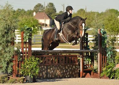 Uptown Equitation Horse Donated to Texas Christian University.jpg
