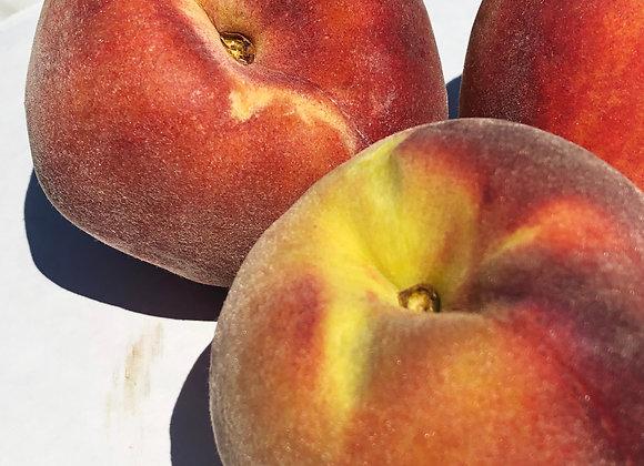 Sierra Rich Peach