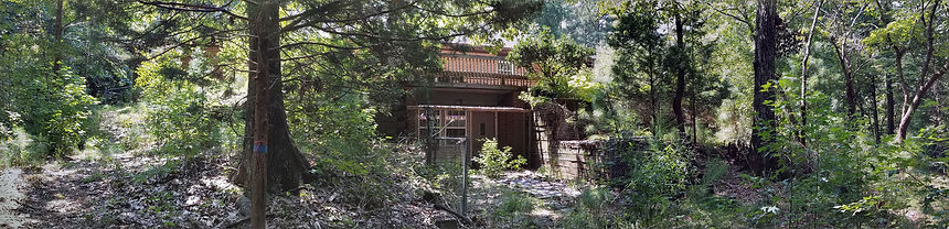 Wildwood-Backyard.jpg