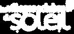 Logo_VCS (1).png