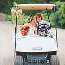 cart wedding.jpg