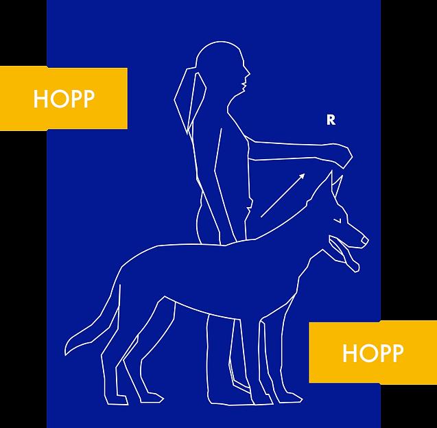 HOPP HOPP 2.png