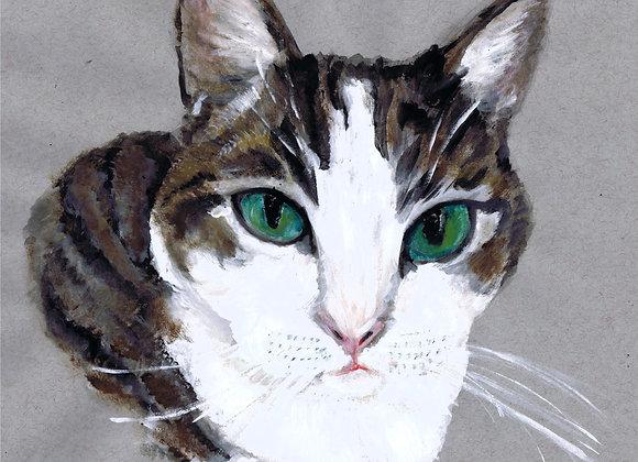 Emerald Eyed Cat