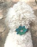 Small Flower on Dog.jpg