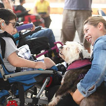 Therapy Dog Teaching Courage at Special Needs School