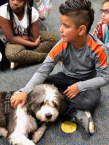 Therapy Dog Char Teaching Empathy