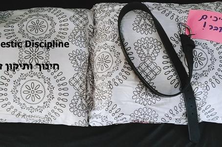 Domestic Discipline - חינוך ותיקון משפחתי