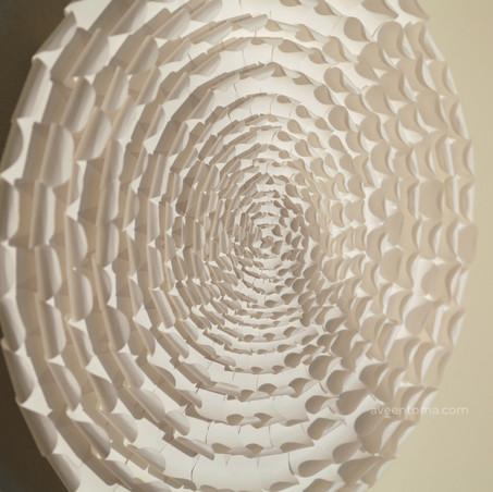 Concentric Corolla