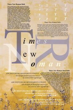 Times New Roman Typography