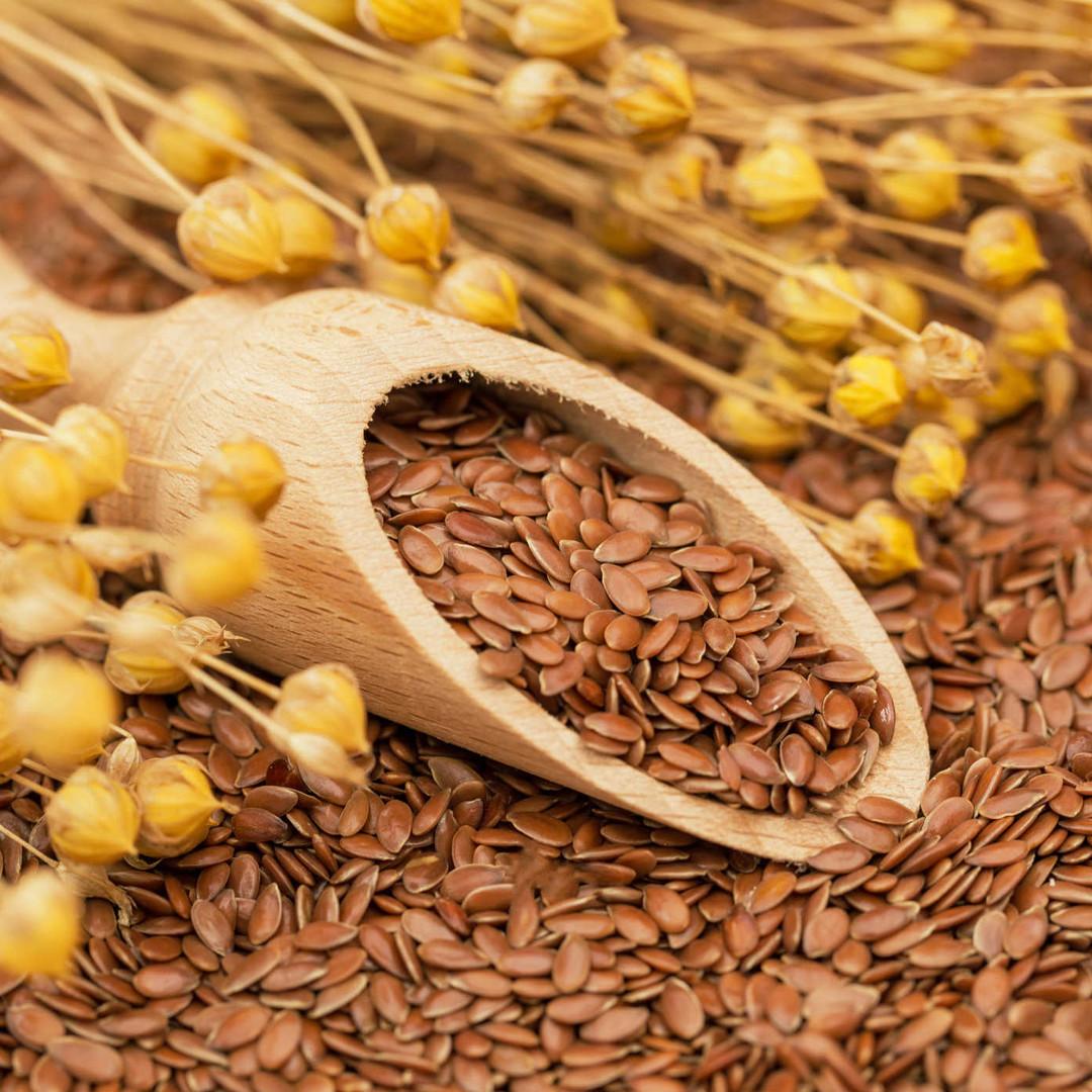 Flax seed.jpg